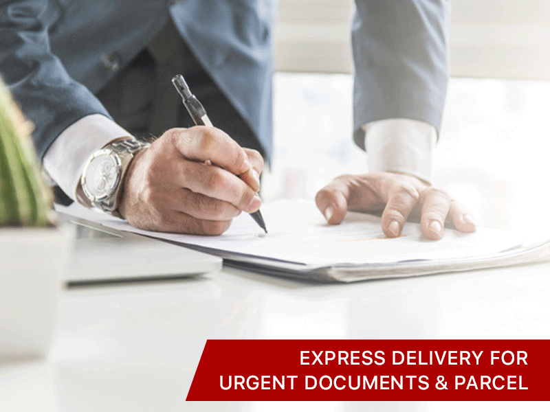 Express Delivery for Urgent Documents & Parcel